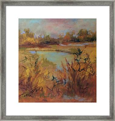 Marsh Memories Framed Print