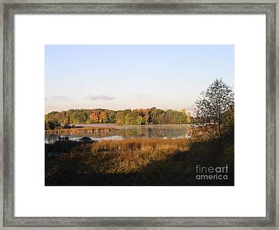 Marsh Morning Framed Print by Mendy Pedersen