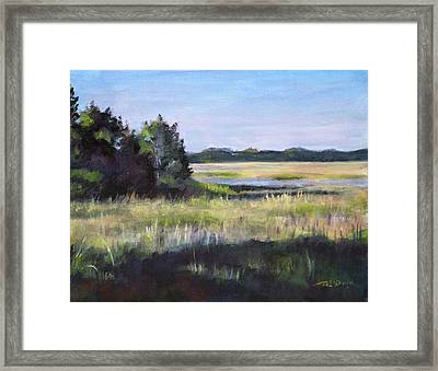 Marsh Promontory Framed Print