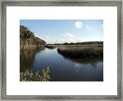 Marsh Reflection Framed Print