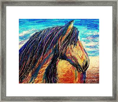 Marsh Tacky Wild Horse Framed Print