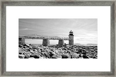 Framed Print featuring the photograph Marshall by Corinne Rhode
