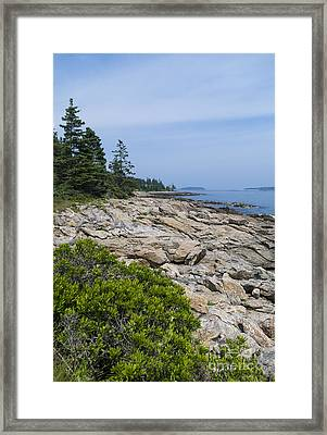 Marshall Ledge Looking Downeast Framed Print