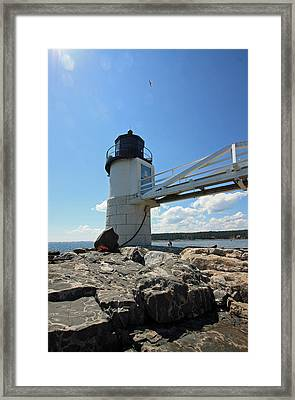 Marshall Point Light Framed Print