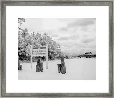 Marshallberg Picnic Framed Print