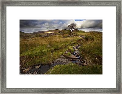 Framed Print featuring the photograph Marshland At Rhyd Ddu, Wales by Richard Wiggins
