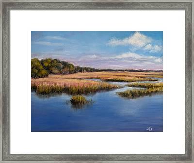Marshland In Florida Framed Print