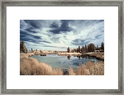 Marshlands In Washington Framed Print