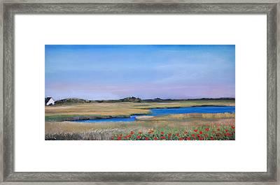 Marshside Framed Print by Cindy Plutnicki