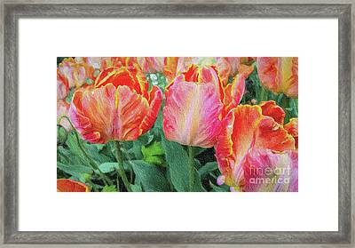 Marthas Vineyard Tulips Large Canvas Art, Canvas Print, Large Art, Large Wall Decor, Home Decor Framed Print