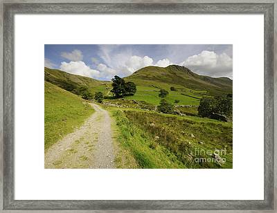 Martindale Common Framed Print by Nichola Denny