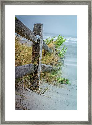 Marvel Of An Ordinary Fence Framed Print by Patrice Zinck