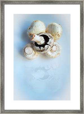 Marvellous Mushrooms Framed Print