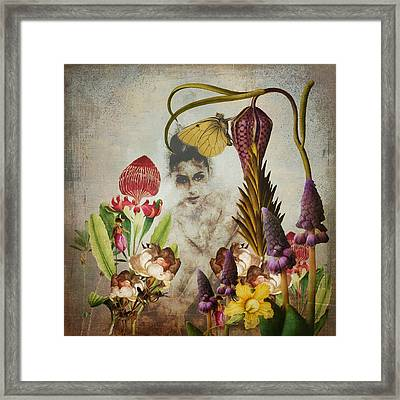 Mary Mary Quite Contrary Framed Print by Terry Fleckney