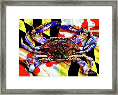 Maryland Blue Crab Framed Print