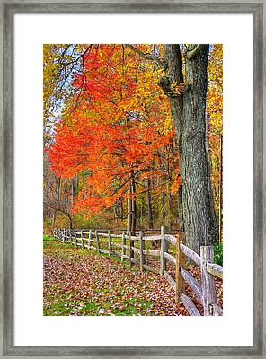 Maryland Country Roads - Autumn Colorfest No. 11 - Eylers Valley Catoctin Mountains Frederick County Framed Print by Michael Mazaika