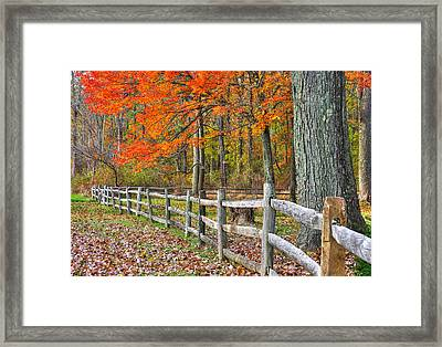 Maryland Country Roads - Autumn Colorfest No. 12 - Eylers Valley Catoctin Mountains Frederick County Framed Print by Michael Mazaika