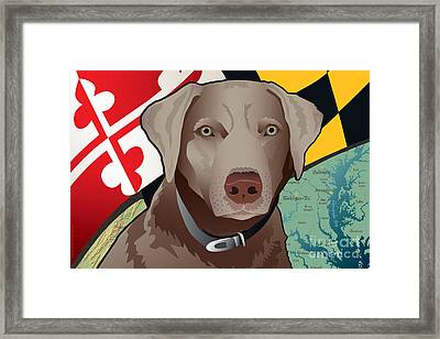 Maryland Silver Lab Framed Print