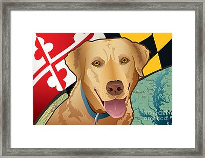 Maryland Yellow Lab Framed Print