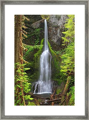 Marymere Falls In Olympic National Park Framed Print by Pierre Leclerc Photography