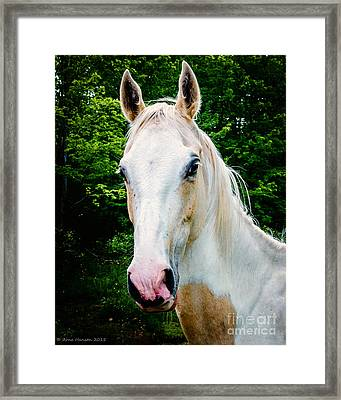 Marys' Mare Framed Print by Arne Hansen