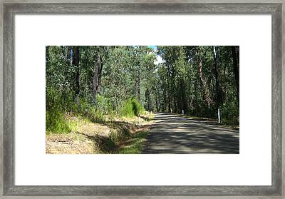 Marysville Trees Framed Print