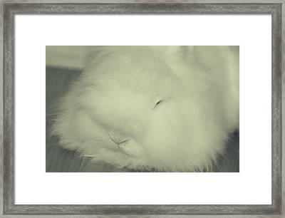 Mashy Potato Framed Print