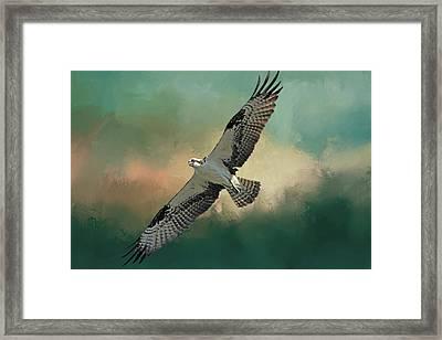 Master Fisher Framed Print