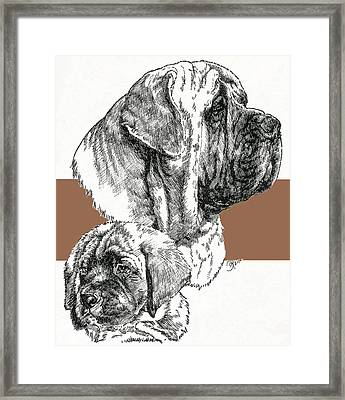Mastiff Father And Son Framed Print by Barbara Keith