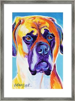 Mastiff - Mercedes Framed Print