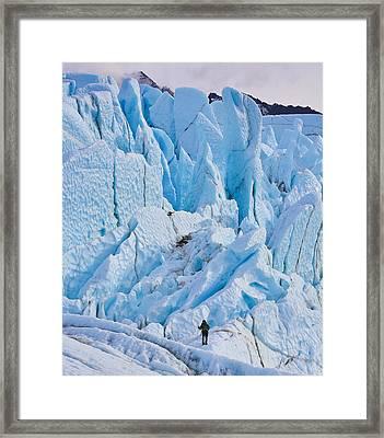 Matanuska Glacier Alaska Hiking Framed Print by Sam Amato