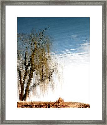 Materialization Of Nature Framed Print