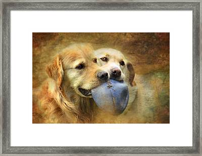 Mates Framed Print by Trudi Simmonds