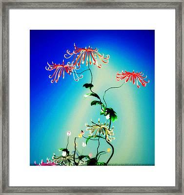 Math Chrysanthemum 1 Framed Print