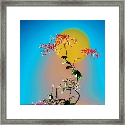 Math Chrysanthemum 2 Framed Print