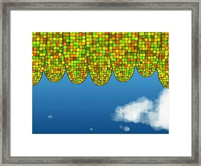 Math Corn Framed Print
