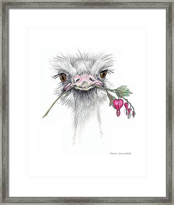 Matilda The Ostrich Framed Print