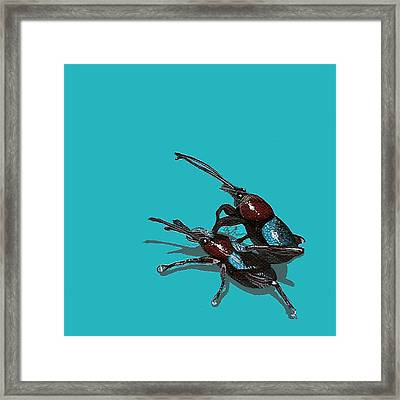 Framed Print featuring the painting Mating Weevils by Jude Labuszewski