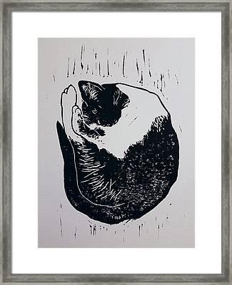 Matisse Framed Print by Noemie Sierra