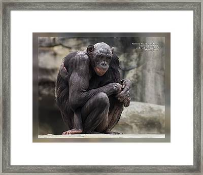 Framed Print featuring the photograph Matthew 11 28 by Dawn Currie