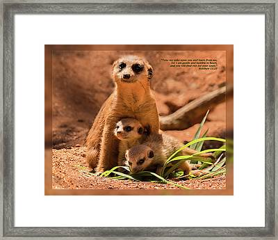 Framed Print featuring the photograph Matthew 11 29 by Dawn Currie