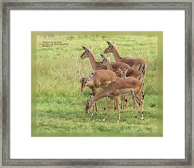 Framed Print featuring the photograph Matthew 5 5 by Dawn Currie