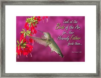 Matthew 6 26 Framed Print