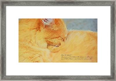 Matthieu 8 20 Framed Print