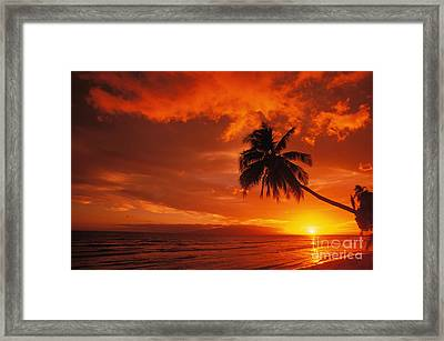 Maui, A Beautiful Sunset Framed Print by Ron Dahlquist - Printscapes