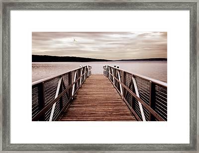 Mauve Morning  Framed Print by Jessica Jenney