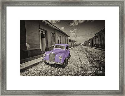 Mauve Prefect  Framed Print