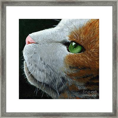 Max - Neighbor Cat Painting Framed Print by Linda Apple