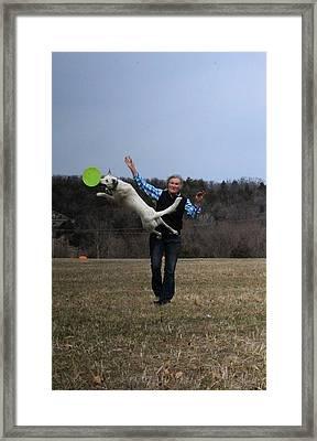Max Bounce Framed Print by Patricia Olson