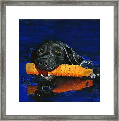 Max Framed Print by Debbie Brown